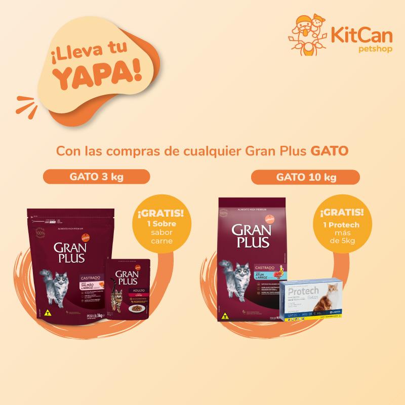 KitCan-petshop-granplus-banner-cel-gato-3-29.09.2021
