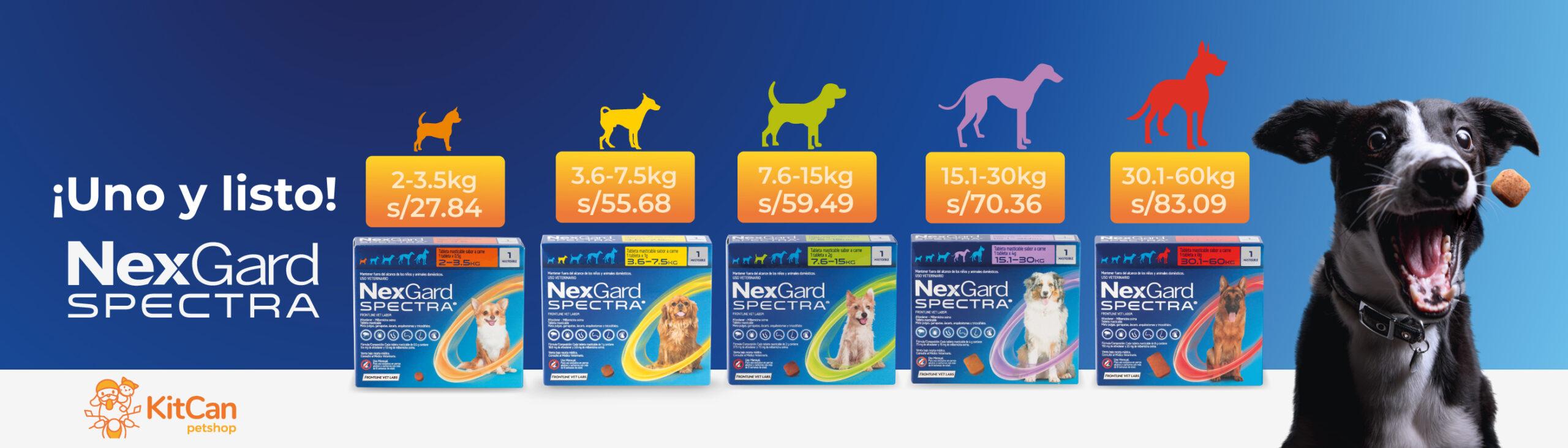 nexgard-expectra-banner-web